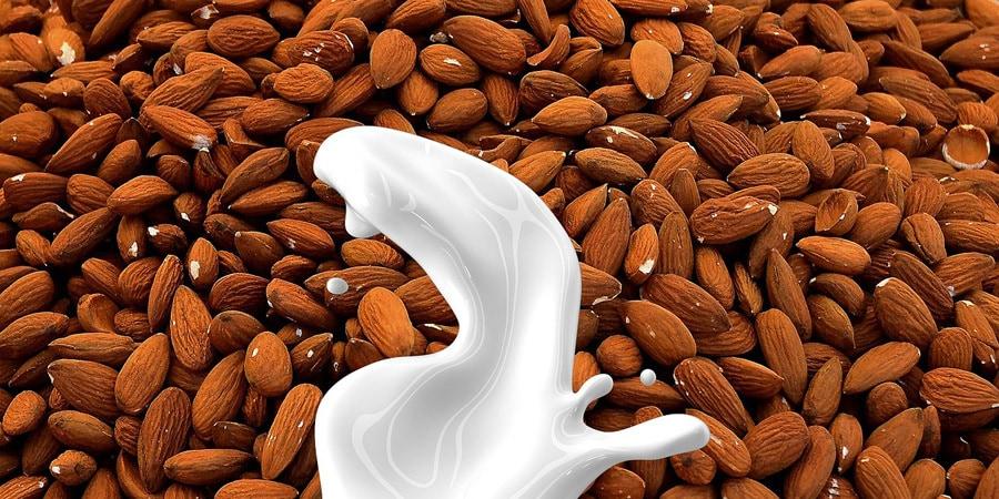 Rostlinná mléka - jaké existují druhy a jak prospívají tělu?