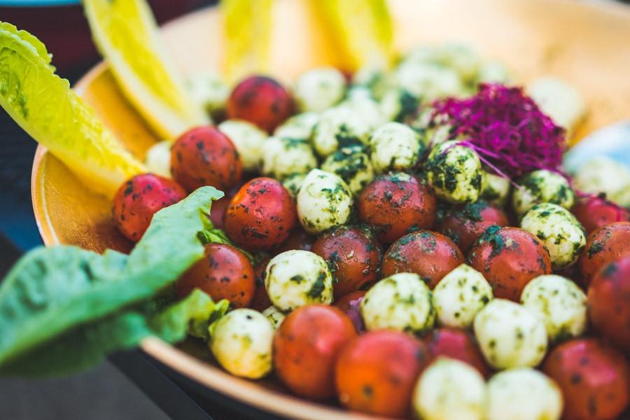 Vegetariánství
